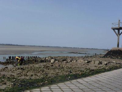 le gois pêche à pied en région de Noirmoutier