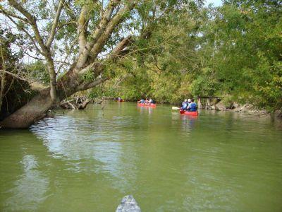 Idées de sorties kayak sur les rivières de vendée